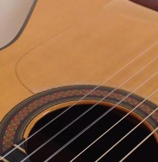 Contreras Flamenco1965
